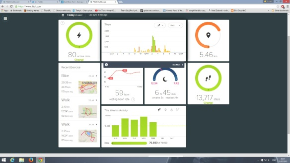 Fitbitsummary